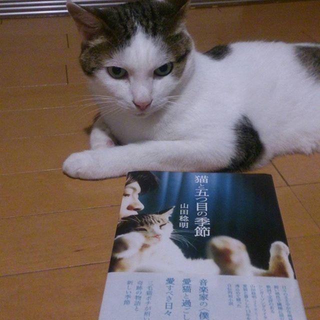 chibikuro0569.jpg